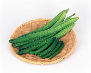 京野菜 きゅうりの写真素材 [FYI01594883]