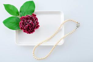 花とパールのネックレスの写真素材 [FYI01595006]
