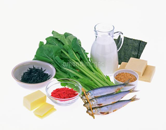 カルシウムを多く含む食品の写真素材 [FYI01595309]