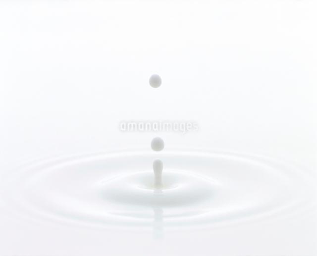 ミルクの波紋の写真素材 [FYI01595326]