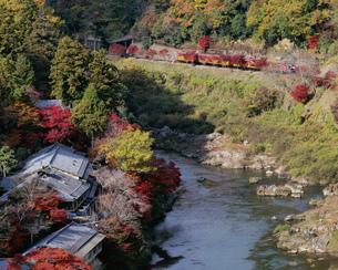 秋の嵐山温泉とトロッコ列車の写真素材 [FYI01595342]