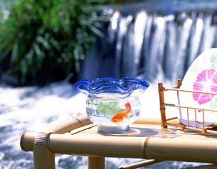 川辺の縁台と金魚と団扇の写真素材 [FYI01595552]