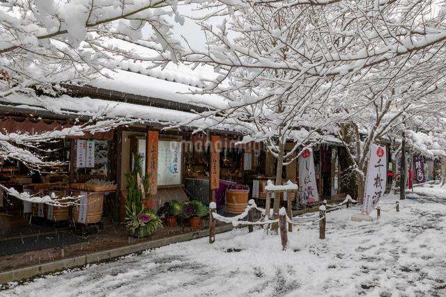 雪の三千院参道の写真素材 [FYI01595846]
