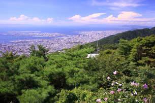 六甲山より神戸を望むの写真素材 [FYI01596123]