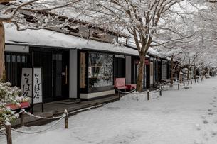 雪の三千院参道の写真素材 [FYI01596194]