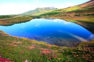 夫婦池と旭岳 大雪山の写真素材 [FYI01596212]