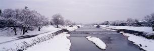雪の賀茂川の写真素材 [FYI01596381]