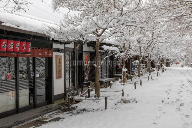 雪の三千院参道の写真素材 [FYI01596413]