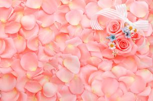 一面に敷詰められたピンクのバラと花びらの写真素材 [FYI01597515]