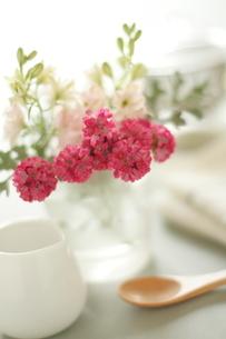 グラスに挿したピンクの小花とスプーンとミルクジャーの写真素材 [FYI01597746]