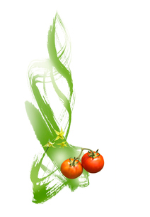 花と実がついているトマトのイラスト素材 [FYI01598272]