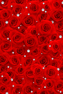 一面に敷詰められた赤いバラと宝石の写真素材 [FYI01598330]