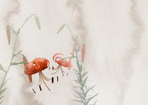 鬼百合の花のイラスト素材 [FYI01598501]