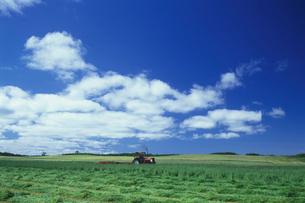 牧草地と空の写真素材 [FYI01598752]