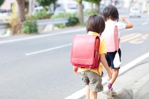 登校する女の子たちの写真素材 [FYI01598778]