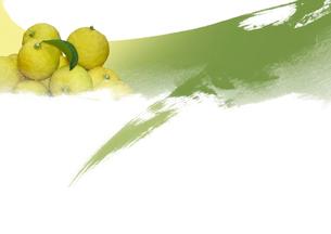 柚子の実と刺をイメージした模様のイラスト素材 [FYI01598942]