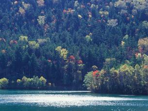 紅葉の然別湖の写真素材 [FYI01599086]
