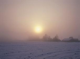 朝日と霧の写真素材 [FYI01599381]