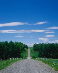 1本道と青空の写真素材 [FYI01599490]