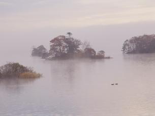 朝霧の大沼の写真素材 [FYI01599698]