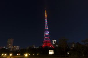 ダイヤモンドヴェールの東京タワーの写真素材 [FYI01599818]