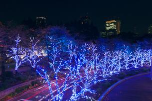 東京ミッドタウンのイルミネーションの写真素材 [FYI01599944]