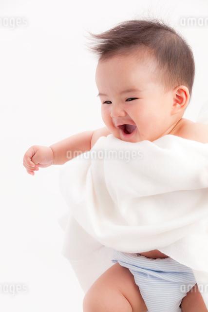 タオルにくるまれた赤ちゃんの写真素材 [FYI01600008]