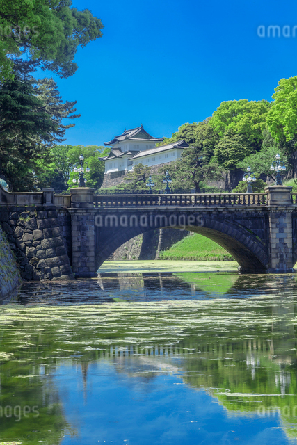 新緑の皇居二重橋の写真素材 [FYI01600090]