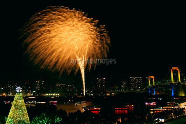 お台場冬の花火の写真素材 [FYI01600198]