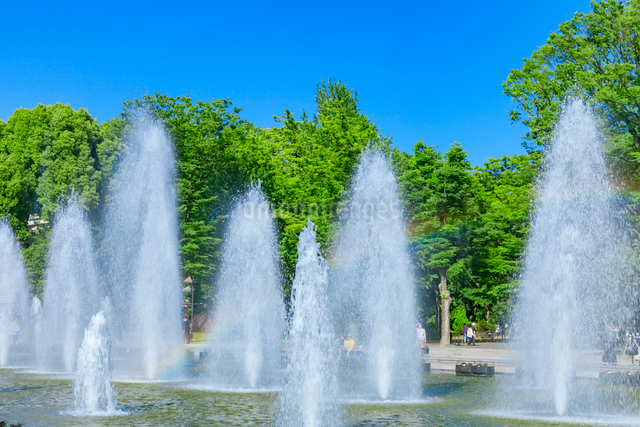 噴水と虹 上野公園噴水広場の写真素材 [FYI01600231]