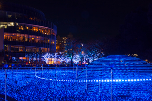 東京ミッドタウンのイルミネーションの写真素材 [FYI01600246]