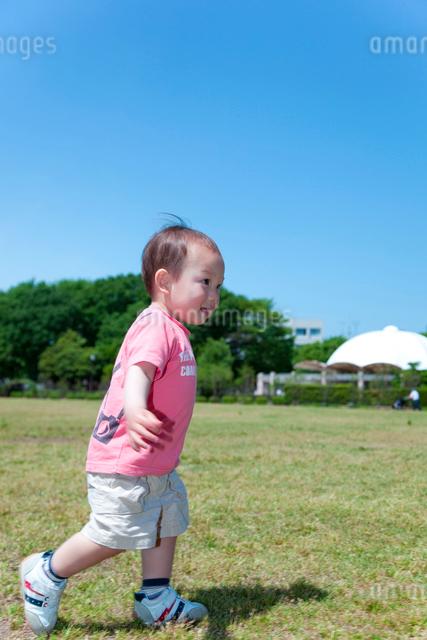芝生の上を走る男の子の写真素材 [FYI01600480]