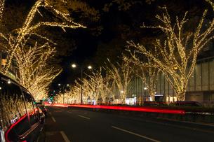 表参道イルミネーション,夜景の写真素材 [FYI01600682]