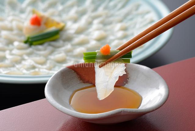 箸でつまんだふぐ刺しの写真素材 [FYI01600709]