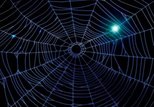 暗闇に光る蜘蛛の巣の写真素材 [FYI01600725]