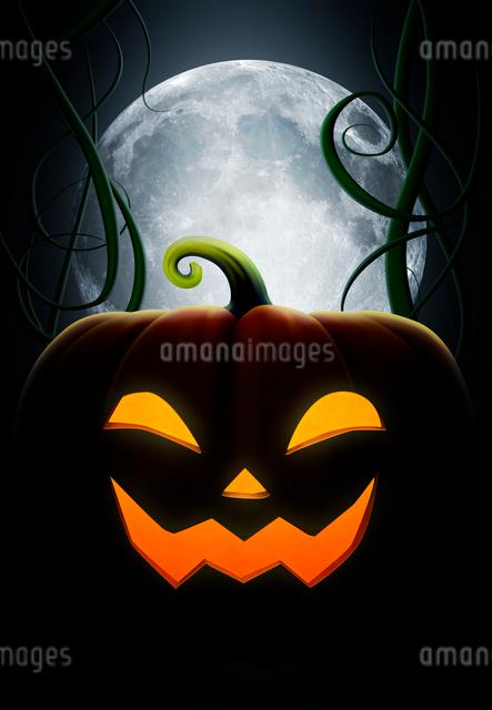 ハロウィンのカボチャと月の写真素材 [FYI01600899]