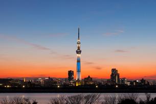 夕焼けの空とスカイツリーの写真素材 [FYI01600946]