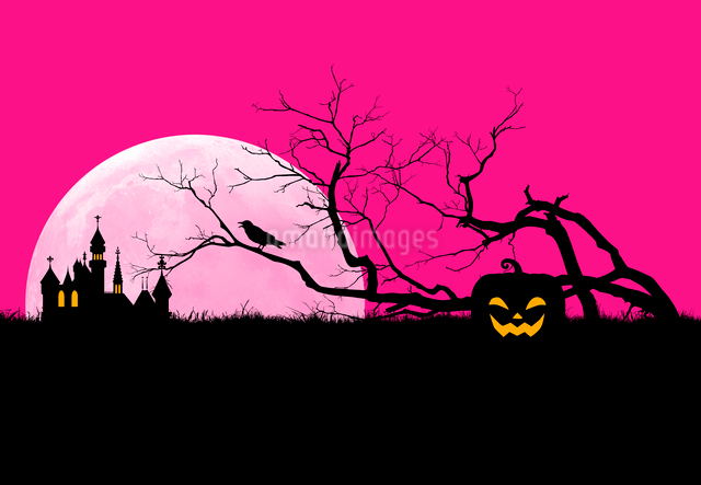 ハロウィンの夜のシルエットイメージの写真素材 [FYI01601053]