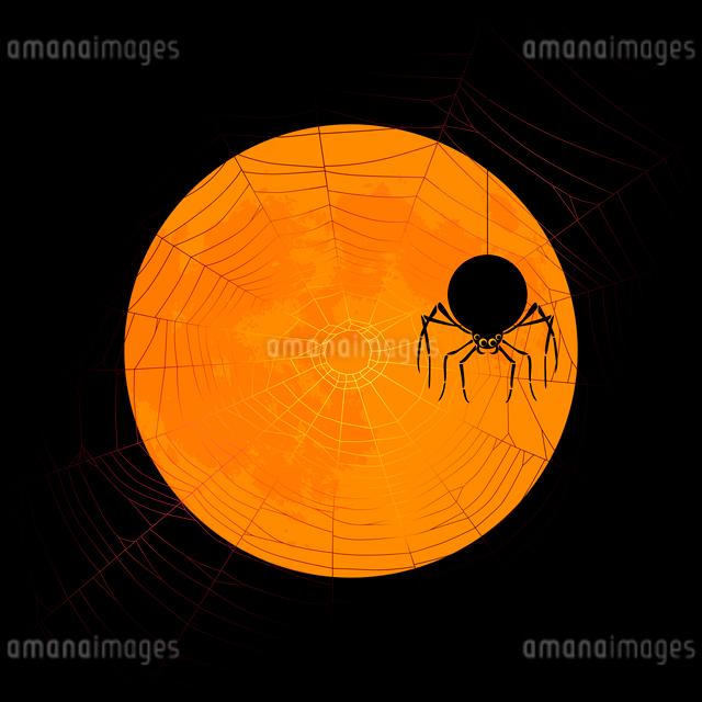 月にシルエットのクモとクモの巣のハロウィンイメージのイラスト素材 [FYI01601056]