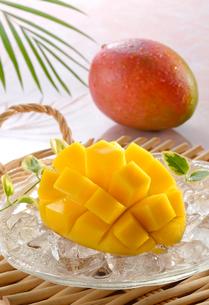 カットされたマンゴーと1個のマンゴーの写真素材 [FYI01601296]