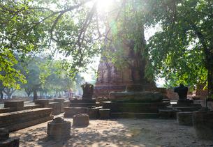ワット・マハータートの仏塔と頭のない仏像の写真素材 [FYI01601300]