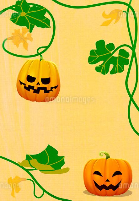 ハロウィンのカボチャと蔓の写真素材 [FYI01601309]