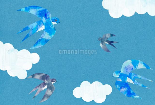 空飛ぶつばめと雲のイラスト素材 [FYI01601493]