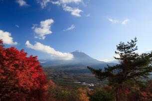 山梨県の紅葉台より望む紅葉と富士山の写真素材 [FYI01601533]