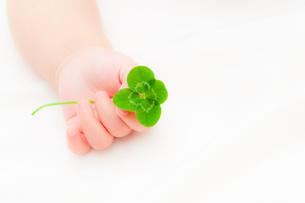 四葉のクローバーを持つ赤ちゃんの手の写真素材 [FYI01601732]