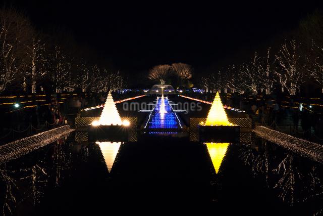 イルミネーション 昭和記念公園の写真素材 [FYI01601763]