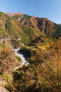 紅葉の寸又峡の写真素材 [FYI01601831]