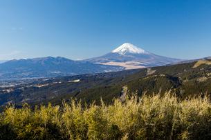十国峠から望む富士山の写真素材 [FYI01601991]