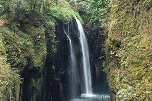 真井の滝の写真素材 [FYI01602157]