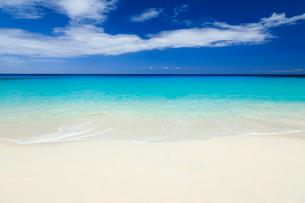 ハワイ島のクアベイの写真素材 [FYI01602287]